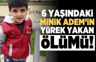 6 yaşındaki minin Adem'in yürek yakan ölümü!