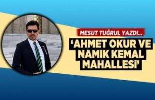 Mesut Tuğrul yazdı... 'Ahmet Okur ve Namık...