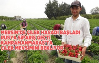 Mersin'de başladı Kahramanmaraş'ta gün...