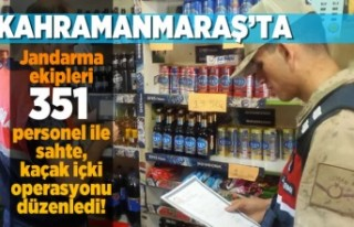 Kahramanmaraş'ta Jandarma ekipleri 351 personel...