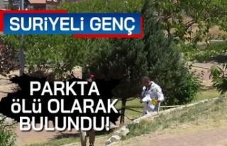 Suriyeli genç parka ölü olarak bulundu!