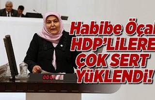 Habibe Öçal HDP'lilere çok sert yüklendi!