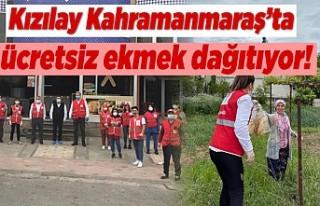 Kızılay Kahramanmaraş'ta ücretsiz ekmek dağıtıyor!