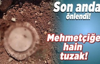 Mehmetçiğe hain tuzak engellendi!