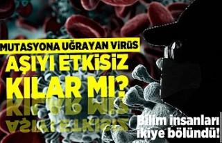 Mutasyona uğrayan virüs aşıyı etkisiz kılar...