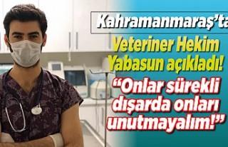 Veteriner Hekim Yabasun açıkladı! ''Onlar...
