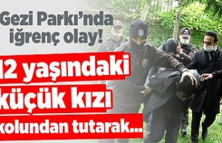 Gezi Parkı'nda iğrenç olay! 12 yaşındaki...