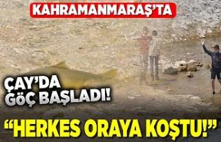 Kahramanmaraş'ta göç başladı! herkes oraya...