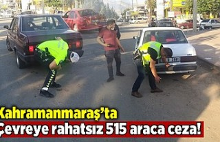 Kahramanmaraş'ta çevreyi rahatsız eden 515...