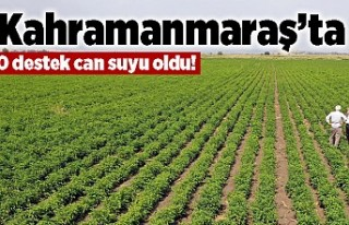 Kahramanmaraş'ta o destek can suyu oldu!