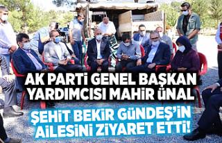 AK Parti Genel Başkan Yardımcısı Mahir Ünal,...