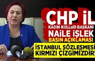 "CHP Kadın Kollar Başkanı Nail İşlek:""İSTANBUL..."
