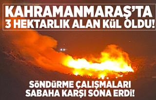 Kahramanmaraş'ta 3 hektarlık alan yandı!