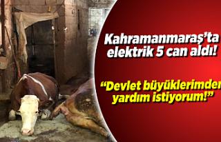 Kahramanmaraş'ta elektrik 5 can aldı!