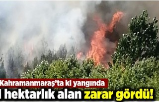 Kahramanmaraş'ta ki yangında 1 hektarlık alan...