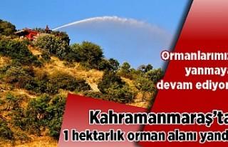 Kahramanmaraş'ta 1 hektarlık orman alanı yandı