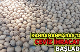 Kahramanmaraş'ta ceviz ihracatı başladı