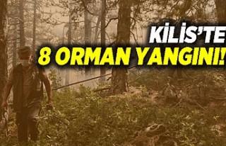 Kilis'te 8 orman yangını!