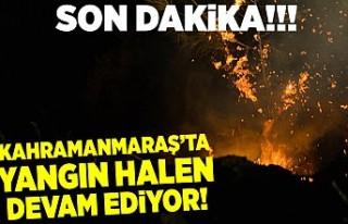 Kahramanmaraş'ta yangın devam ediyor!