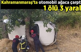 Kahramanmaraş'ta otomobil ağaca çarptı 1 ölü...
