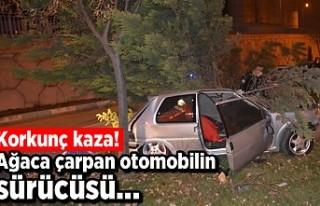 Korkunç kaza! Ağaca çarpan otomobilin sürücüsü,..