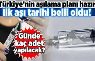 Türkiye'nin aşılama planı hazır! ilk aşı...