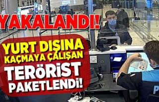 Yurt dışına kaçmaya çalışan terörist paketlendi!...