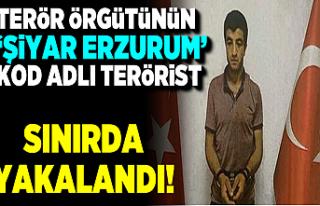 Gri kategorideki terörist İslam Biliz yakalandı!