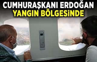 Cumhurbaşkanı Erdoğan yangın bölgesinde incelemelerde...