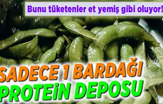 Et yerine tüketebileceğiniz en iyi vejetaryen protein...