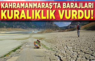 Kahramanmaraş'ta barajları kuraklık vurdu! Barajlarda...