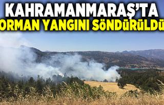 Kahramanmaraş'ta orman yangını söndürüldü!...