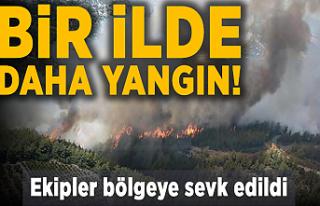 Bir ilde daha yangın çıktı! Ekipler bölgeye sevk...