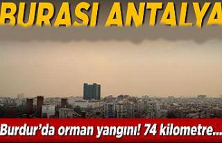 Burdur'da orman yangını! Dumanlar Antalya'yı...