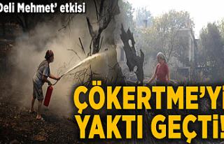 Çökertme'yi bitiren rüzgar! 'Deli Mehmet'