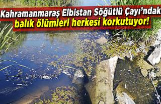 Kahramanmaraş'ın Elbistan Söğütlü Çayı'nda,...