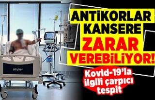 Antikorlar kansere zarar verebiliyor! Kovid-19'la...