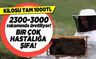 Kilosu tam 1000TL! 2300-3000 rakamında üretiliyor! Bir çok hastalığa şifa!
