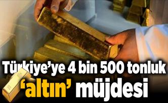 Türkiye'ye 4 bin 500 tonluk 'altın' müjdesi