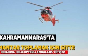 Kahramanmaraş'ta mantar toplamak için gitti! İmdadına helikopterli ambulans yetişti!