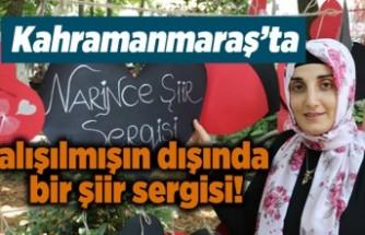 Kahramanmaraş'ta alışılmışın dışında bir şiir sergisi!