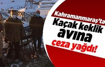 Kahramanmaraş'ta kaçak keklik avına ceza yağdı!