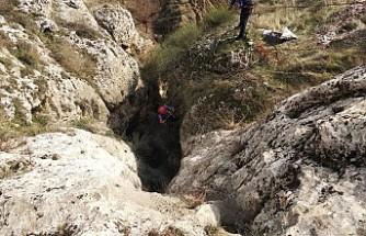 Kayaların arasında mahsur kalan 2 keçi kurtarıldı