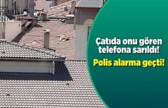 Çıplak vaziyette çatıya çıkınca polis alarma geçti!