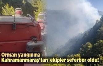 Orman yangınına Kahramanmaraş'tan ekipler seferber oldu!