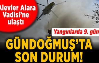 Son Dakika Haberleri: Yangınlarda 9. gün! Alevler Alara Vadisi'ne ulaştı