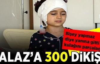 Köpek saldırısına uğrayan Alaz'ın kulağına 300 dikiş atıldı