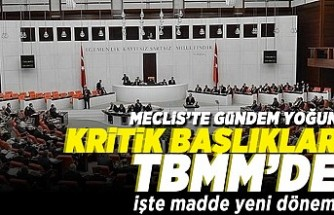 Mecliste gündem yoğun! Kritik başlıklar TBMM'de işte madde madde yeni dönem!