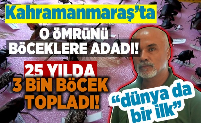 Kahramanmaraş'ta ömrünü böceklere adadı, 25 yılda 3 bin böcek topladı!