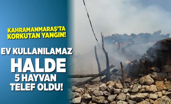 Kahramanmaraş'ta korkutan yangın, ev kullanılamaz halde 5 hayvan telef oldu